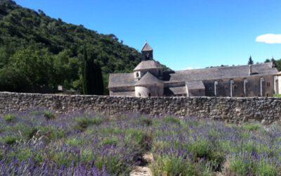 Stille rund um die Abbaye Notre-Dame de Sénanque