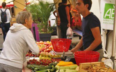 Genuss in Hülle und Fülle auf dem Markt in Saint-Rémy
