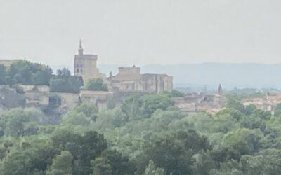 Der Klostergarten von Saint-André lebt sein ganz eigenes Leben